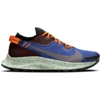 Deportes_Apalategui_Nike_Running_Pegasus_Trail_2_GTX_CU2016_600_1