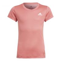 Deportes_Apalategui_Camiseta_Adidas_Performance_Niña_GM8405_1